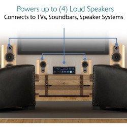 Amplificador Receiver Audio Video Dvd Usb Mp3 Karaoke 3000w PRO3000 RADDYCAL